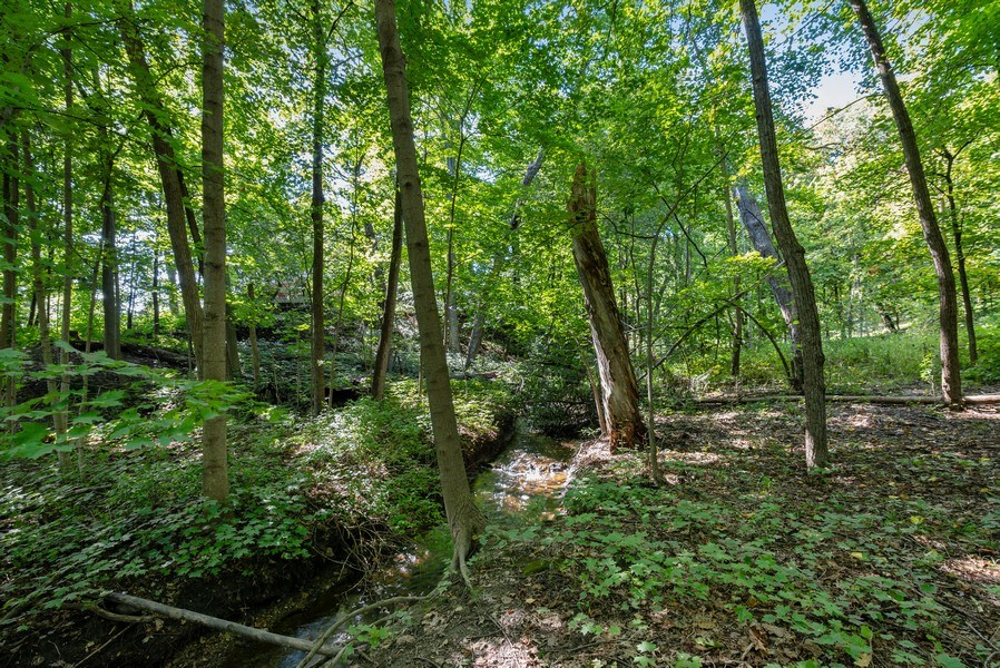 Real Estate Photography - 32433 N. Forest Dr., Grayslake, IL, 60030 - Backyards' Creek w/Bedrock Bottom