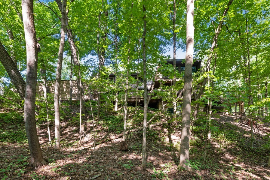 Real Estate Photography - 32433 N. Forest Dr., Grayslake, IL, 60030 - House in the Woods, Bird Lovers Paradise