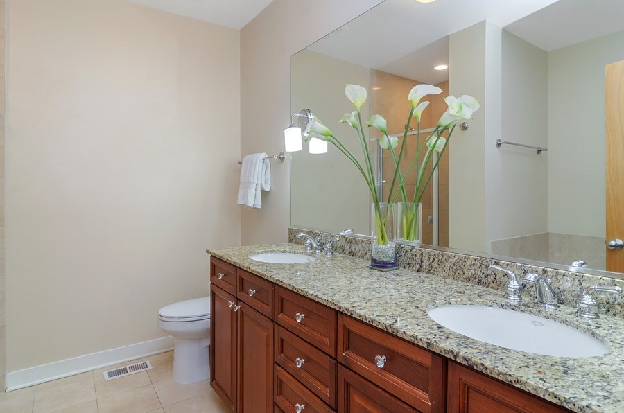 Real Estate Photography - 2141 W. Churchill Street, Chicago, IL, 60647 - Master Bathroom (Dual Vanity, Shower, Jacuzzi Tub)