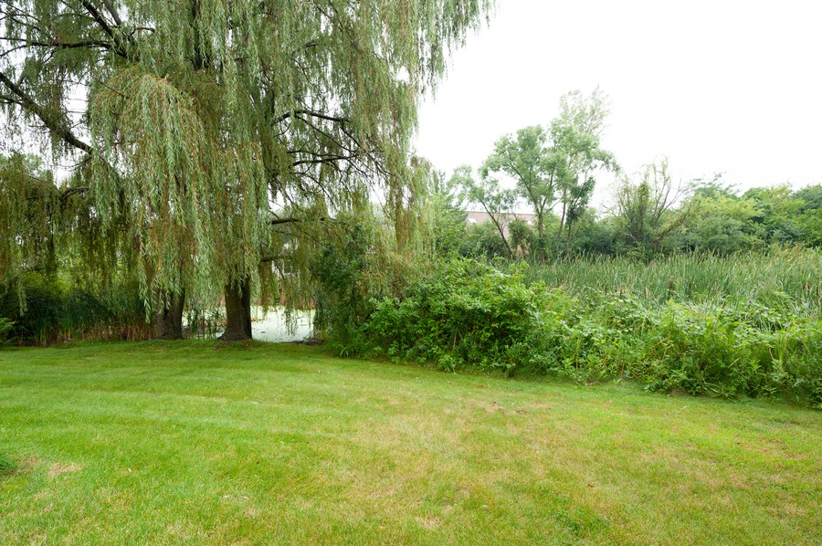 Real Estate Photography - 4658 Red Wing Lane, Long Grove, IL, 60047 - Back Yard