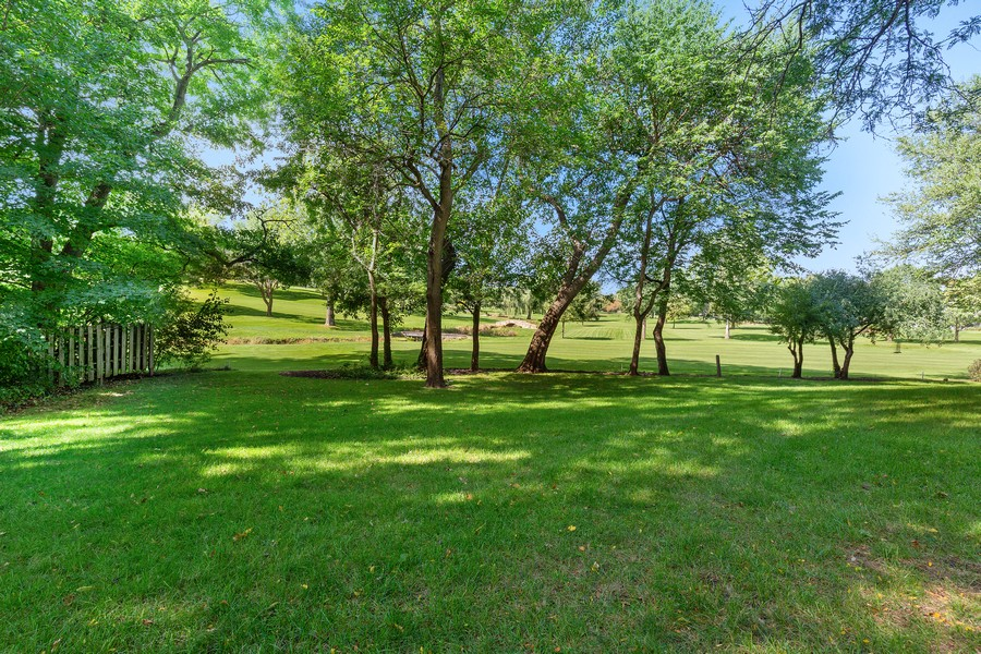 Real Estate Photography - 254 KENSTON CT, GENEVA, IL, 60134 - Back Yard