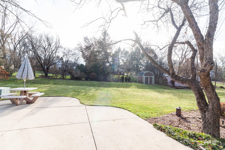 Real Estate Photography - 1565 Almond, Downers Grove, IL, 60515 - Back Yard