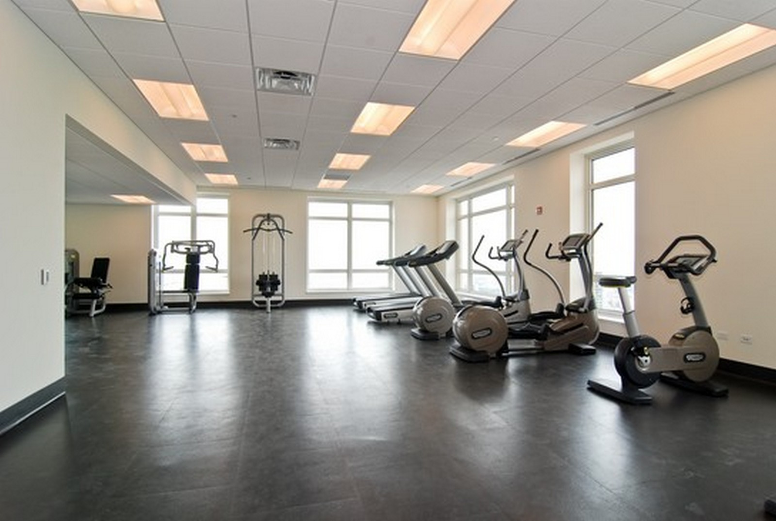 Real Estate Photography - 10 E Delaware Ave, Chicago, IL, 60610 - Exercise Room