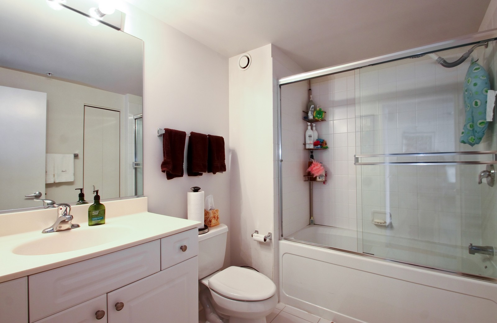 Real Estate Photography - 807 Davis, Evanston, IL, 60201 - Bathroom