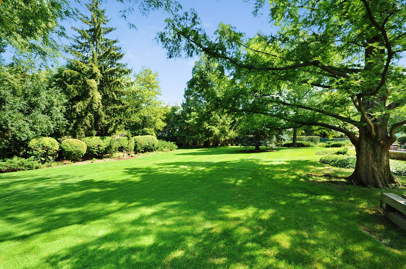 Real Estate Photography - 430 Pebblebrook, Northfield, IL, 60093 - Back Yard