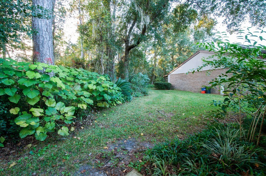 Real Estate Photography - 3931 NW 29 lane, Gainesville, FL, 32607 - Back Yard