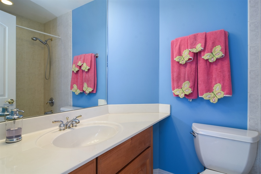 Real Estate Photography - 21558 W Goldfinch Ct, Kildeer, IL, 60047 - 2nd Bathroom