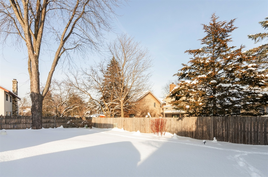 Real Estate Photography - 835 Glendale Drive, Crystal Lake, IL, 60014 - BEAUTIFUL PERENNIALS IN SPRING!