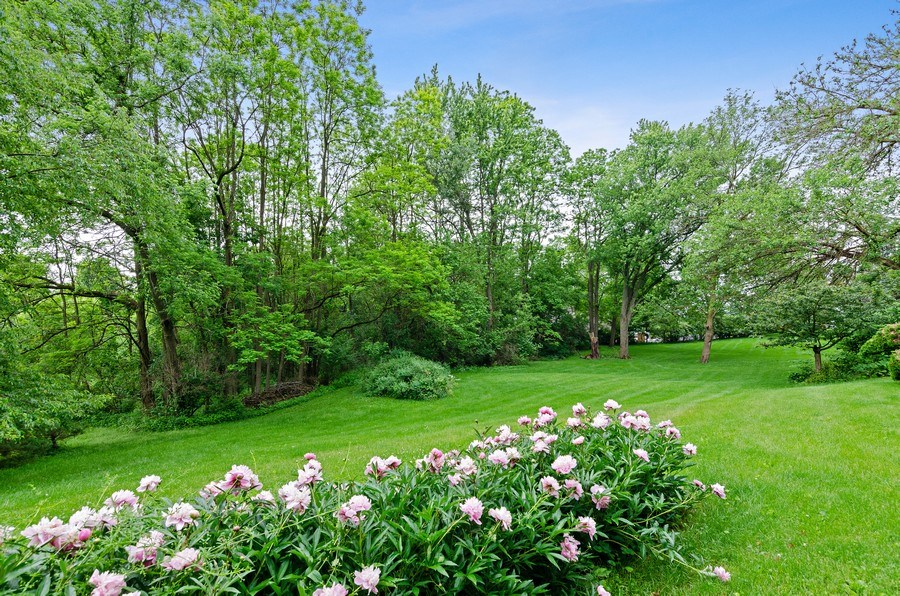 Real Estate Photography - 17N029 Sleepy Hollow Road, Dundee, IL, 60118 - Back Yard