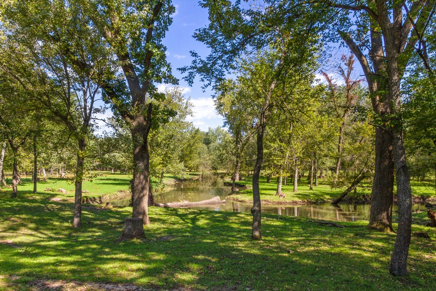 Real Estate Photography - 6191 Shattuck, Belvidere, IL, 61008 - Stream & Pasture Area Currently Groomed by Cattle