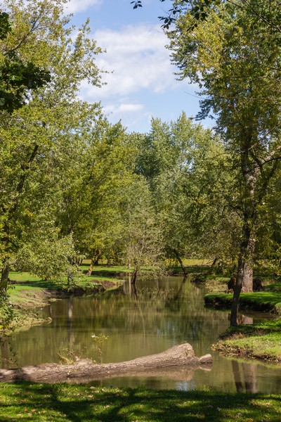 Real Estate Photography - 6191 Shattuck, Belvidere, IL, 61008 - Wooded area and Stream