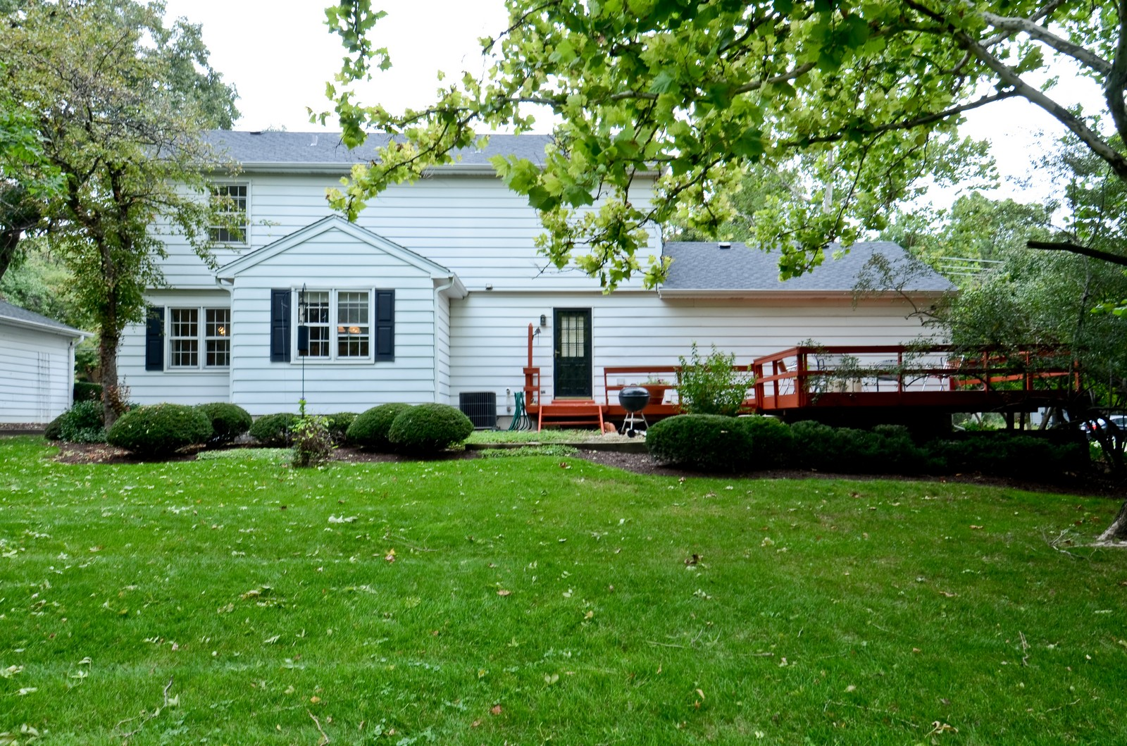 Real Estate Photography - 1101 35th St, Downers Grove, IL, 60515 - Rear View