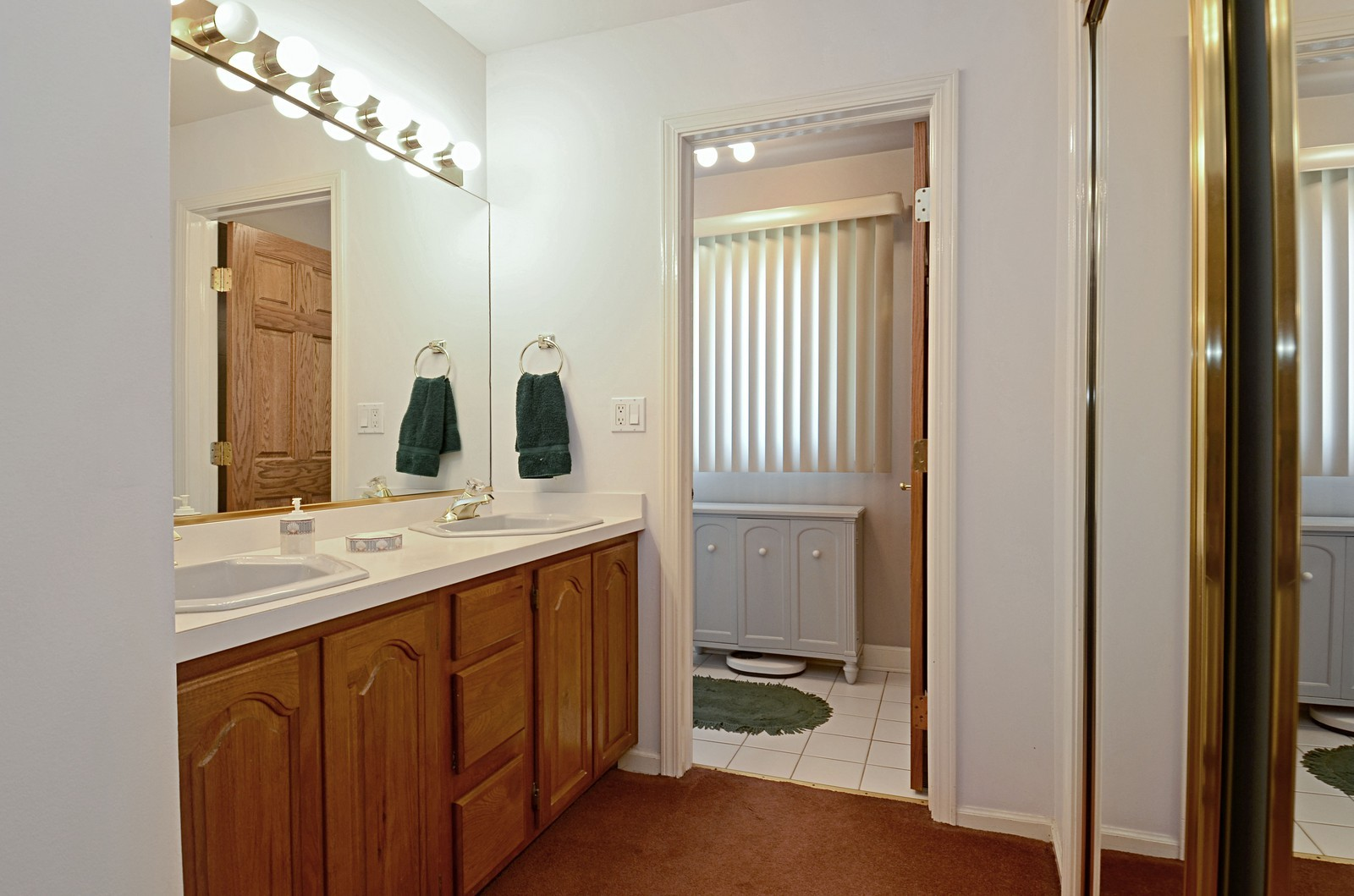 Real Estate Photography - 367 S Edgewood, Wood Dale, IL, 60191 - Master Bathroom