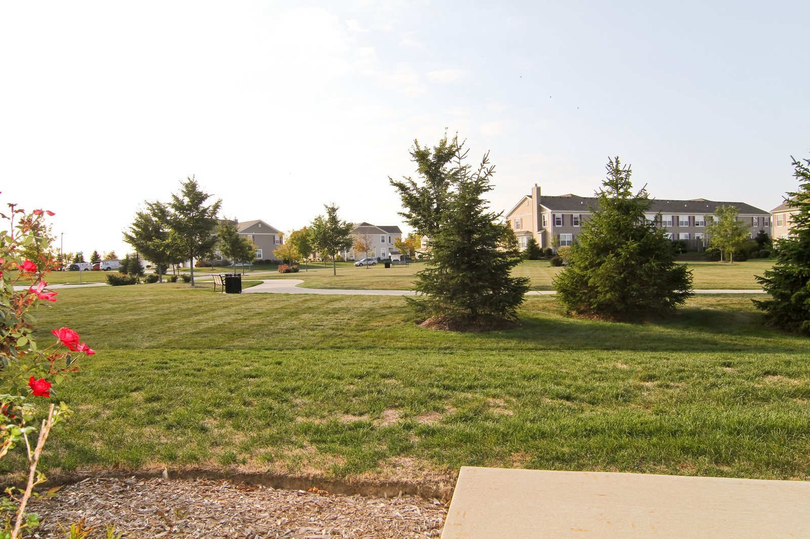 Real Estate Photography - 34W573 W Roosevelt Ave, Unit C, Saint Charles, IL, 60174 - Back Yard