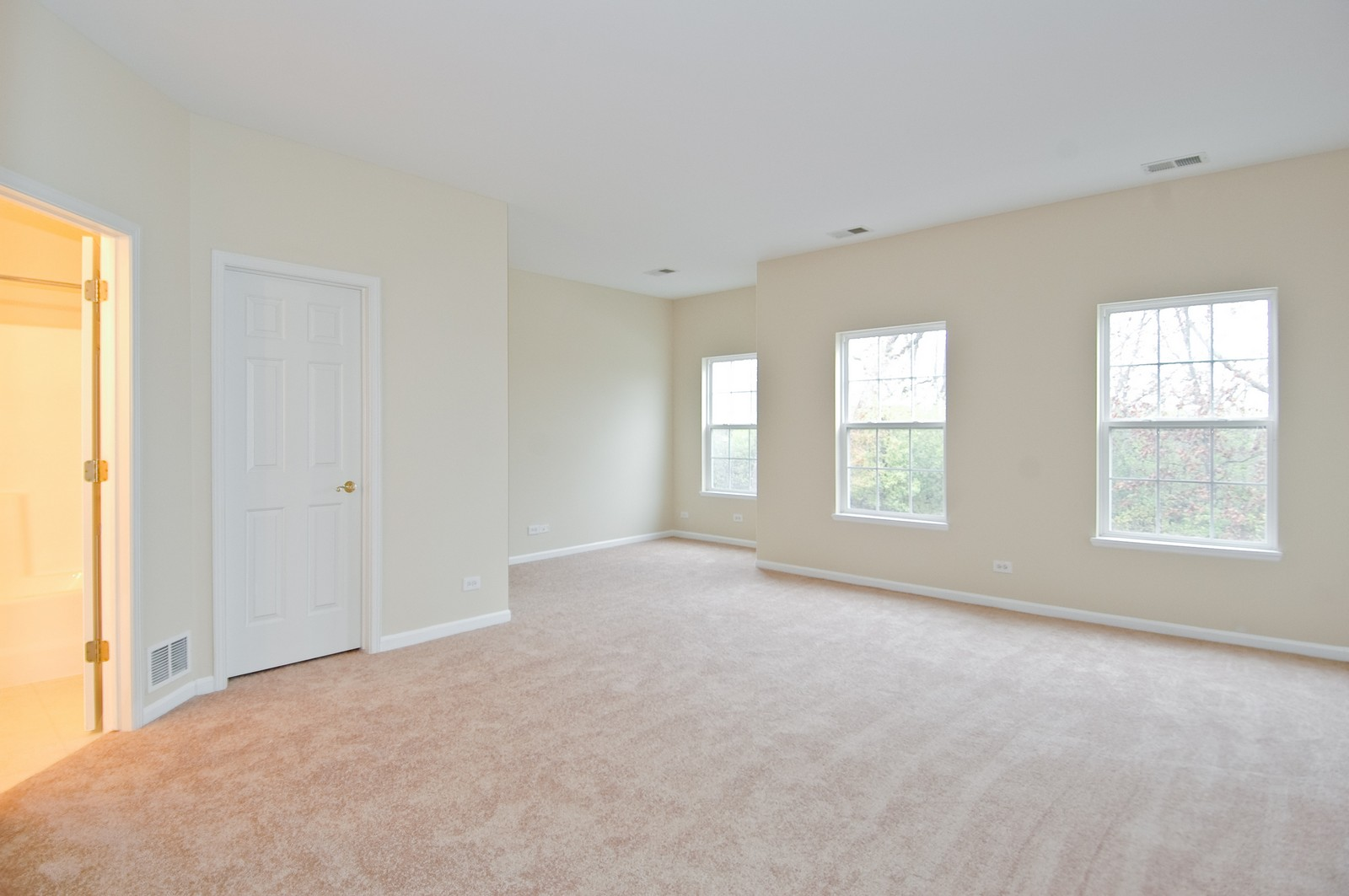 Real Estate Photography - 2737 Cobblestone Dr, Unit B, Crystal Lake, IL, 60012 - Master Bedroom