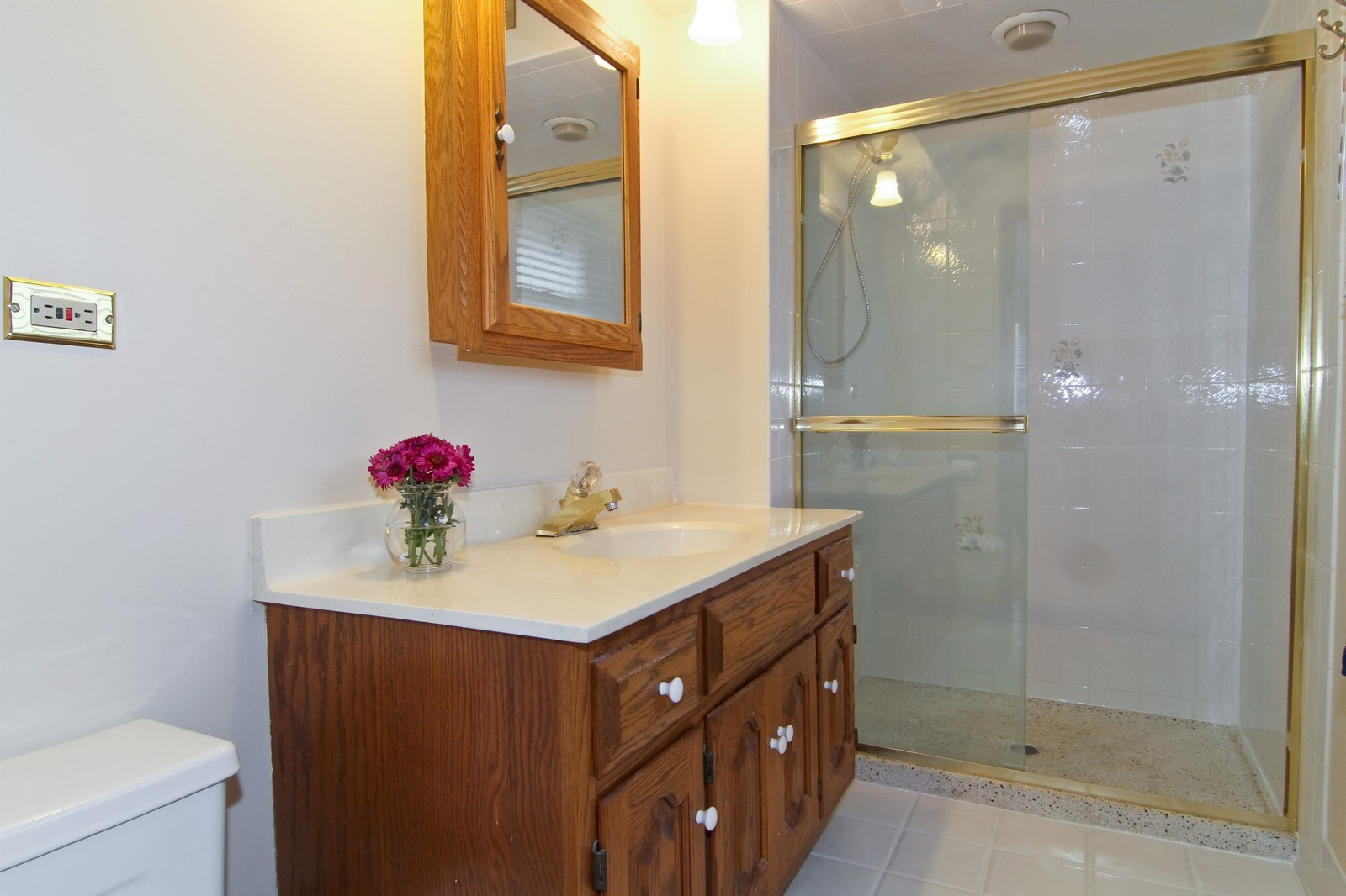Real Estate Photography - 68 Swift Ln, Naperville, IL, 60565 - Master Bathroom