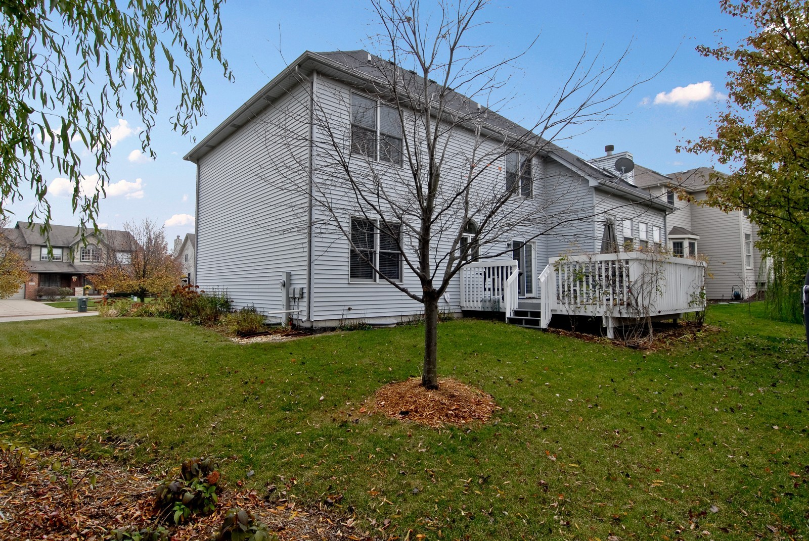 Real Estate Photography - 2111 Sisters Ave, Naperville, IL, 60564 - Rear View