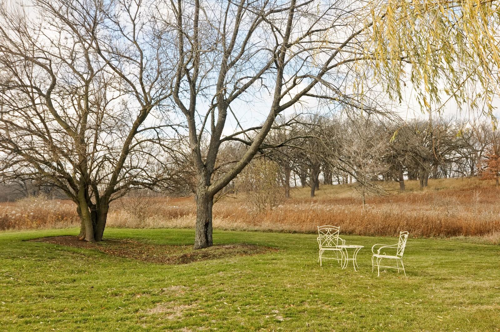 Real Estate Photography - 27137 Driftwood Ct, Lake Barrington, IL, 60010 - Back Yard