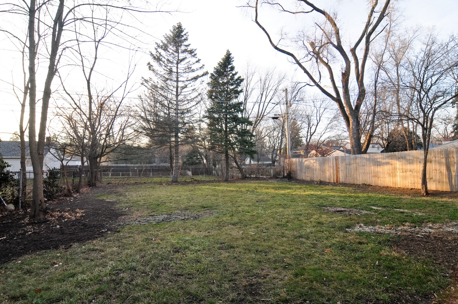 Real Estate Photography - 1516 N Jackson St, Waukegan, IL, 60085 - Back Yard