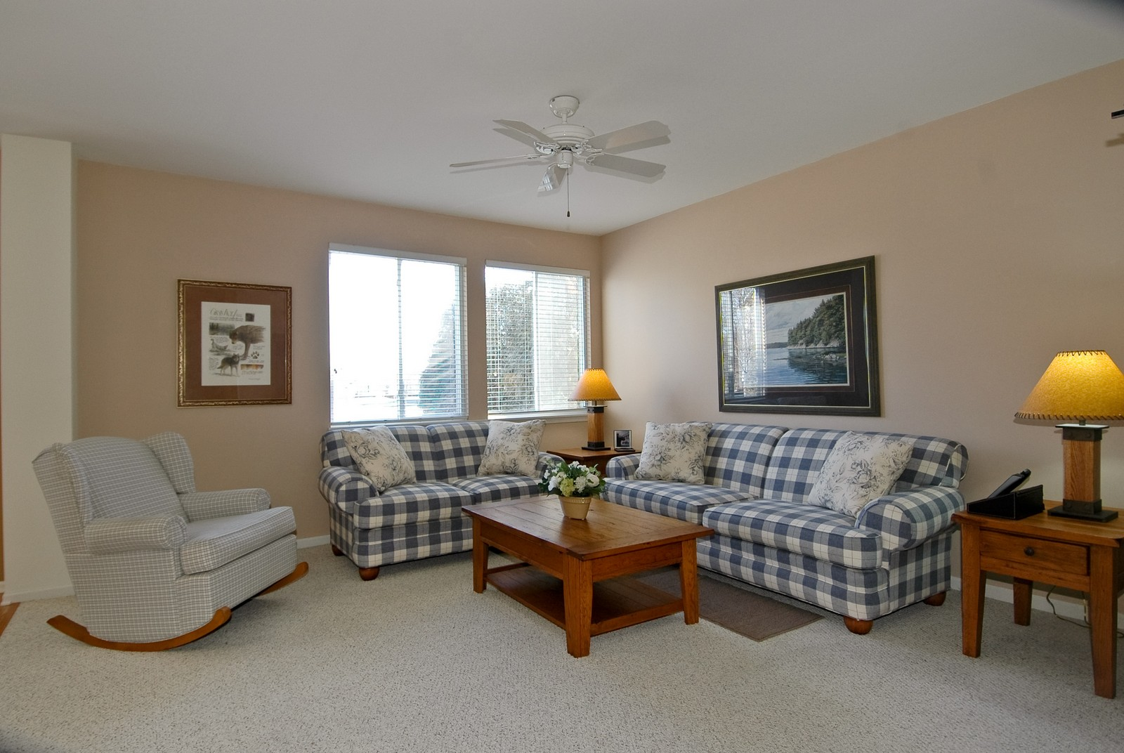 Real Estate Photography - 425 N Carlisle Ct, Round Lake, IL, 60073 - Living Room