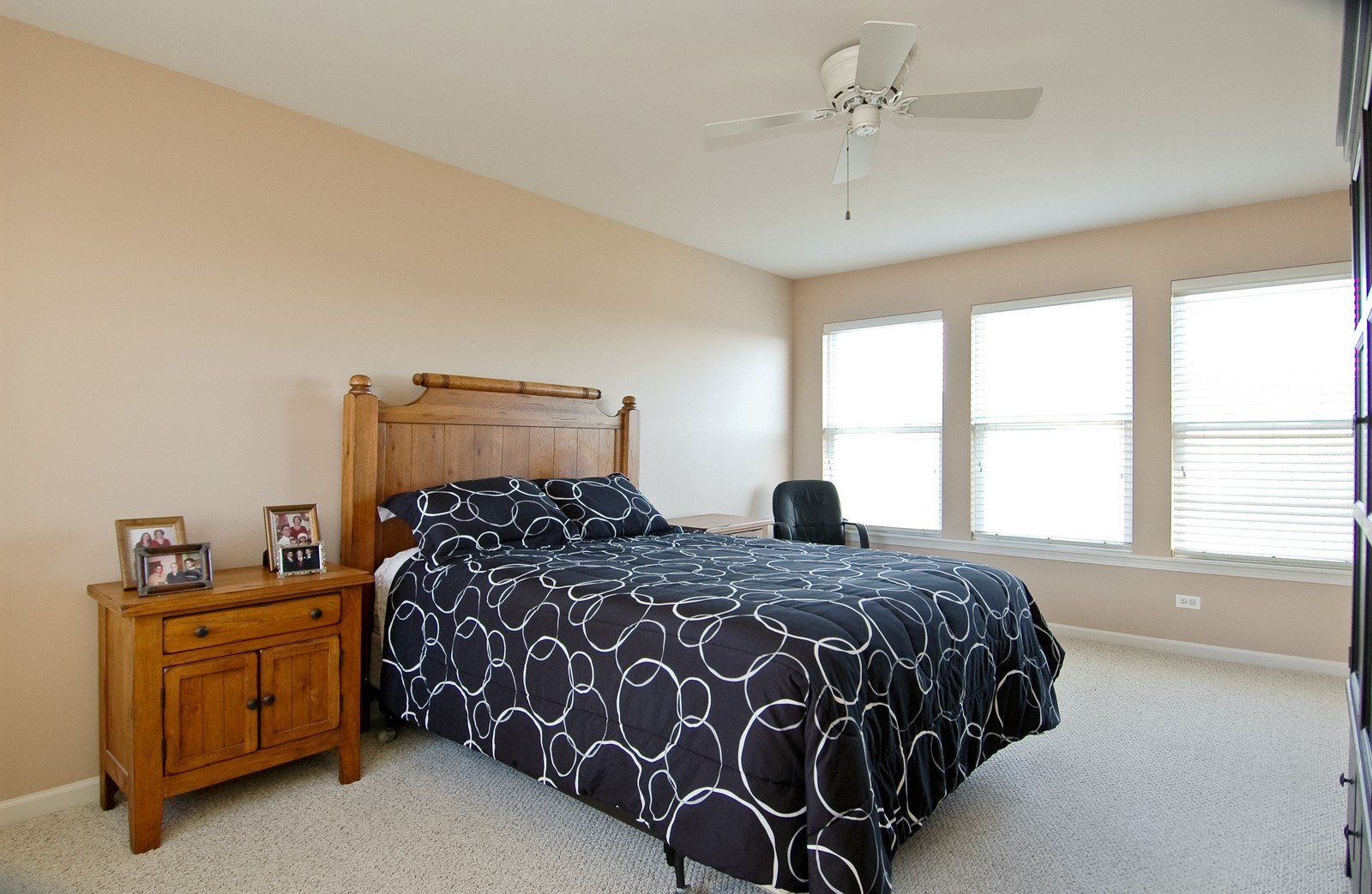 Real Estate Photography - 425 N Carlisle Ct, Round Lake, IL, 60073 - Master Bedroom
