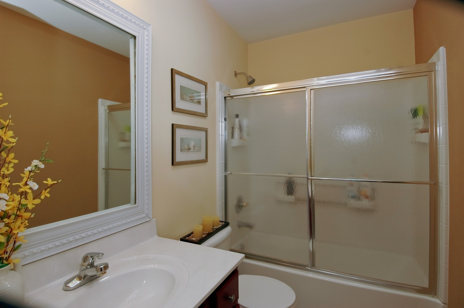 Real Estate Photography - 425 N Carlisle Ct, Round Lake, IL, 60073 - Bathroom
