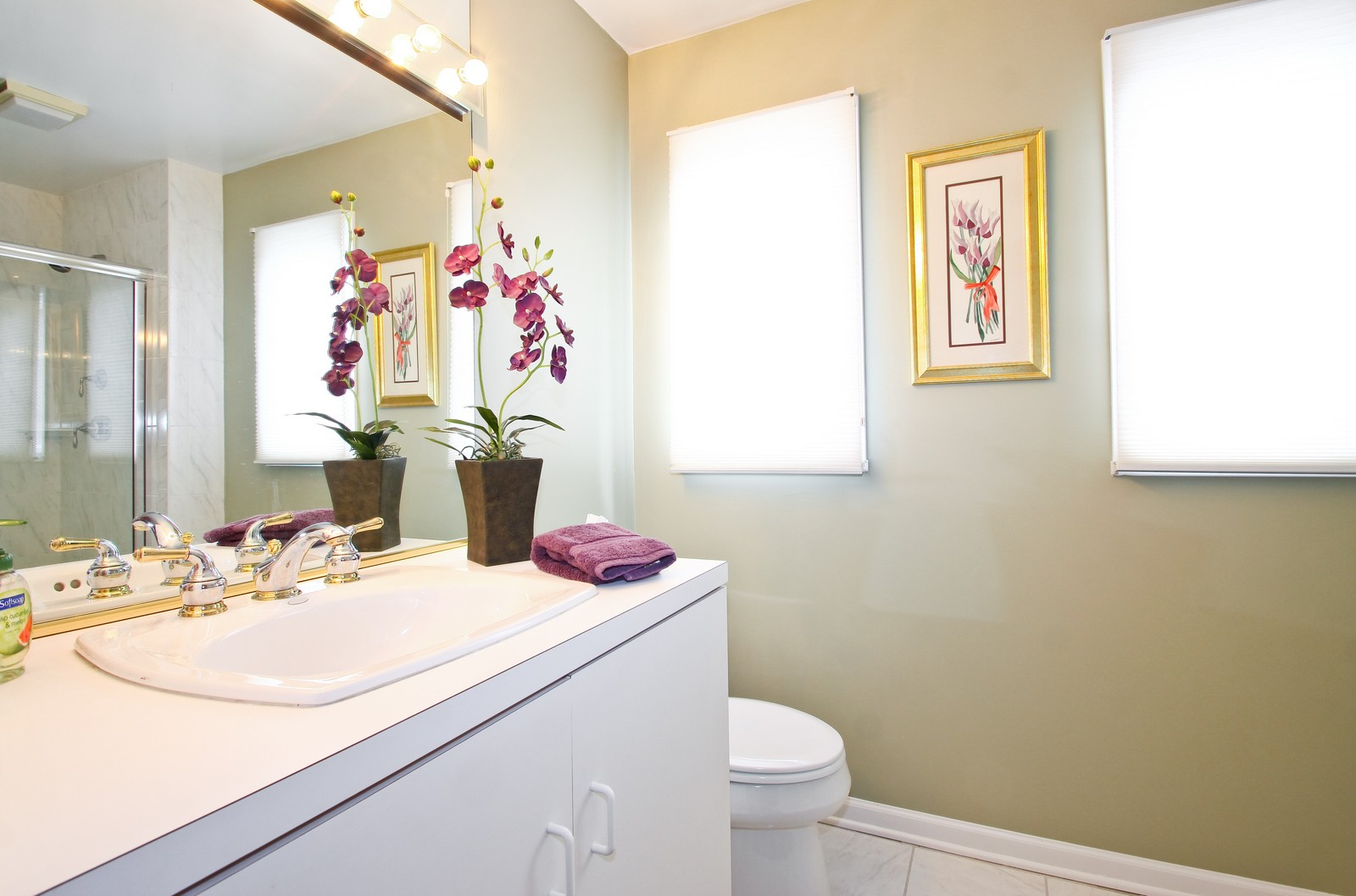 Real Estate Photography - 1013 Rene Ct, Park Ridge, IL, 60068 - Bathroom