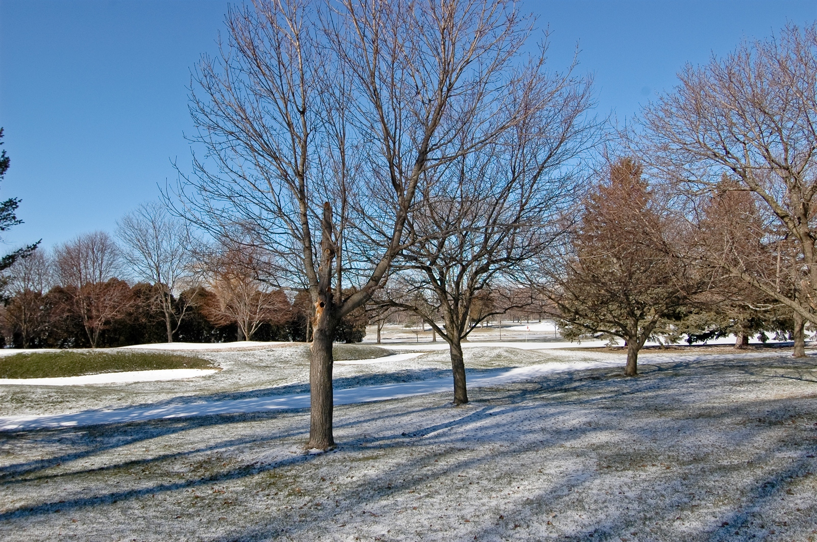 Real Estate Photography - 740 St Andrews Lane, Unit 24, Crystal Lake, IL, 60014 - Golf Course