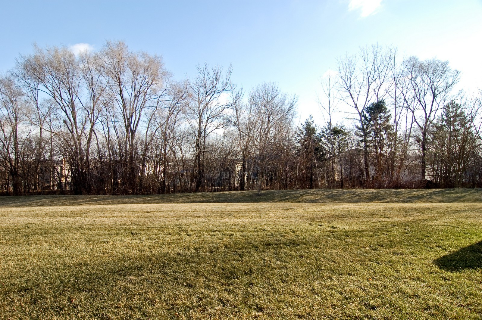 Real Estate Photography - 65 Woodview Dr, Glen Ellyn, IL, 60137 - Back Yard
