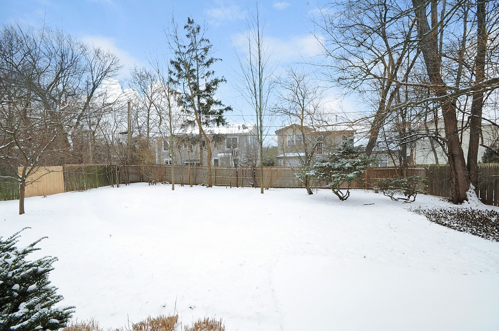 Real Estate Photography - 734 Marion Ave, Highland Park, IL, 60035 - Back Yard