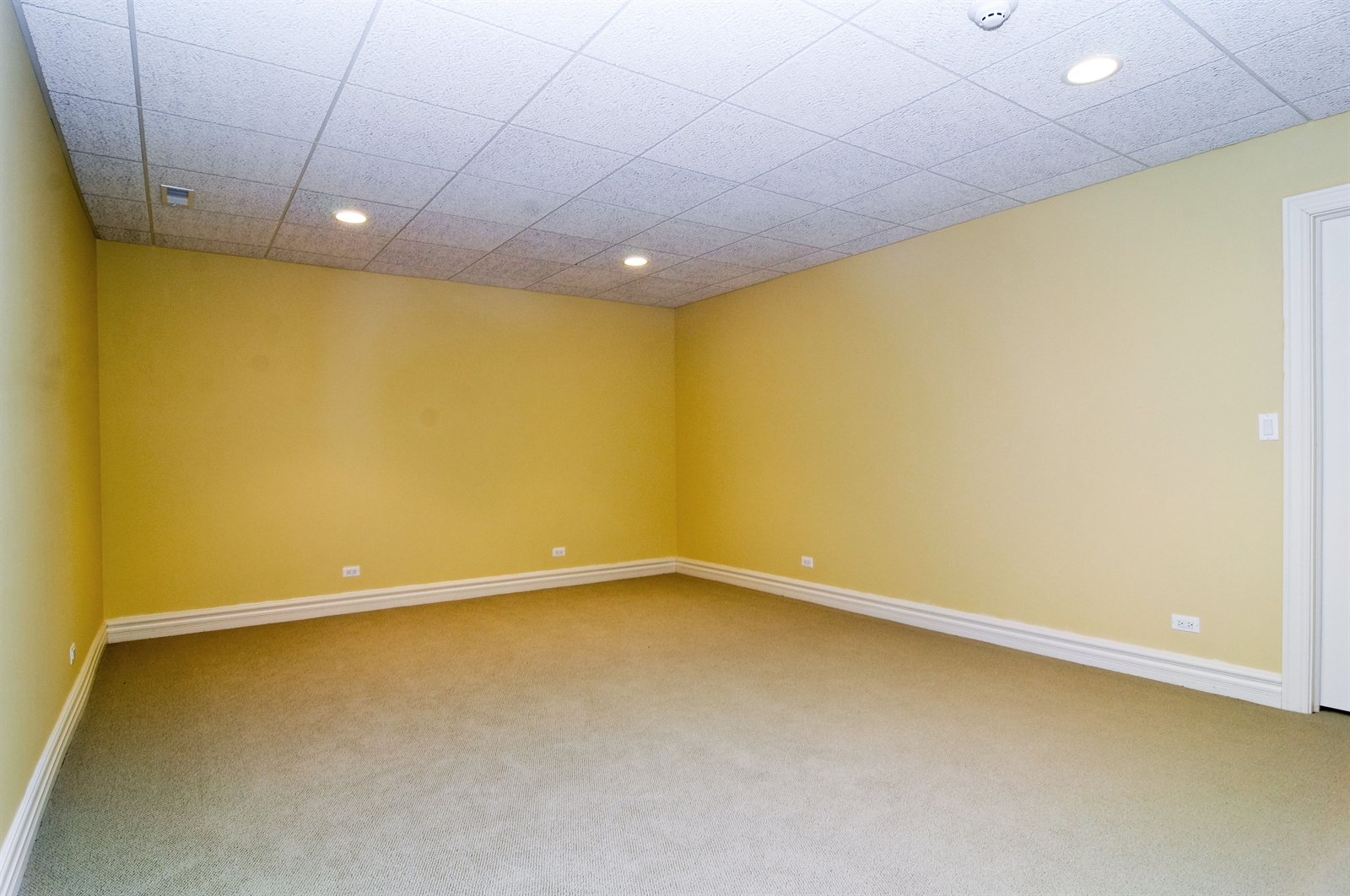 Real Estate Photography - 411 Caesar Dr, Barrington Hills, IL, 60010 - Theater