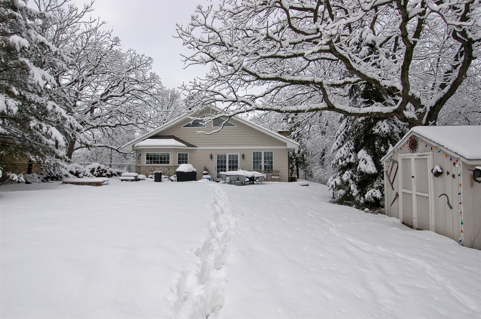 Real Estate Photography - 405 Concord Ave, Fox River Grove, IL, 60021 - Rear View