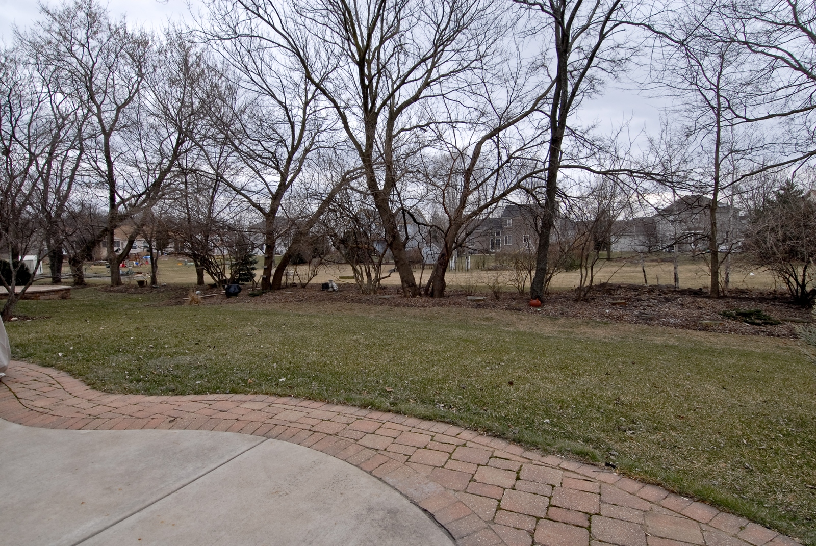 Real Estate Photography - 644 Dewig Ct, North Aurora, IL, 60542 - Back Yard