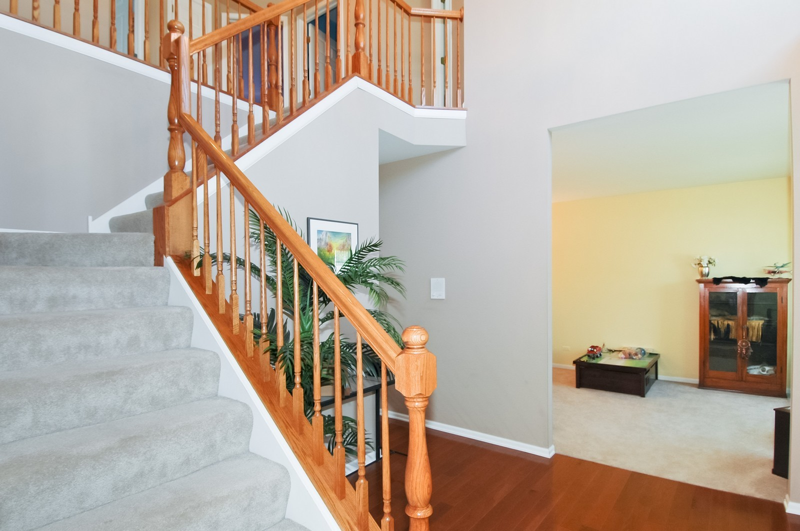 Real Estate Photography - 3521 Buckboard Dr, Algonquin, IL, 60102 - Foyer/Living Room