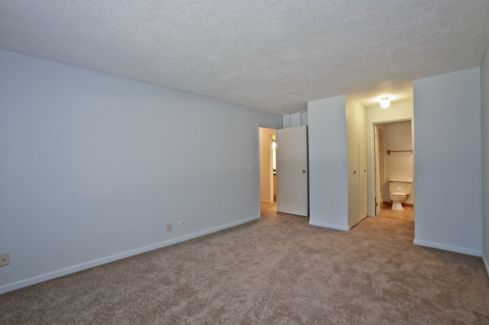 Real Estate Photography - 2811 Hobson Rd, Unit 3, Woodridge, IL, 60517 - Master Bedroom