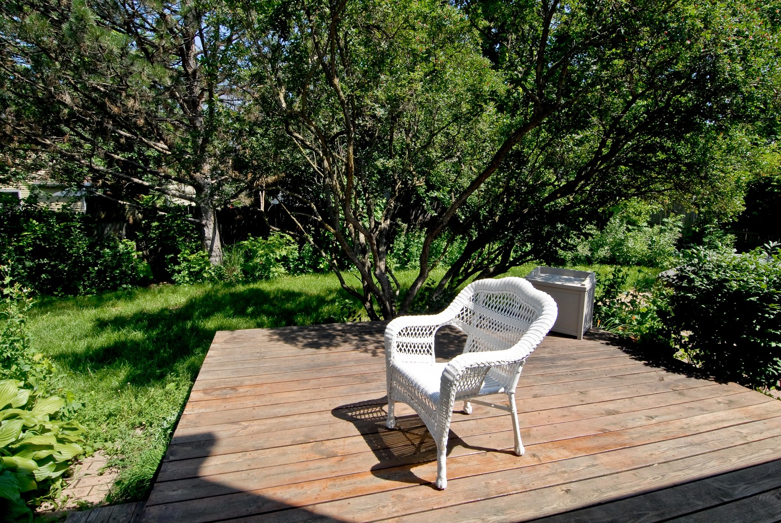 Real Estate Photography - 1414 Madison Ave, St Charles, IL, 60174 - Back Yard