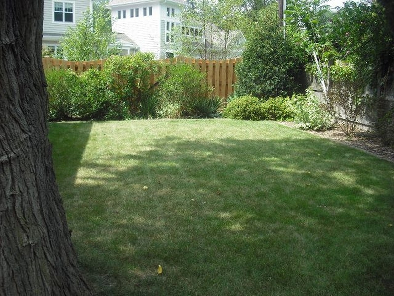 Real Estate Photography - 368 Lorraine St, Glen Ellyn, IL, 60137 - Back Yard