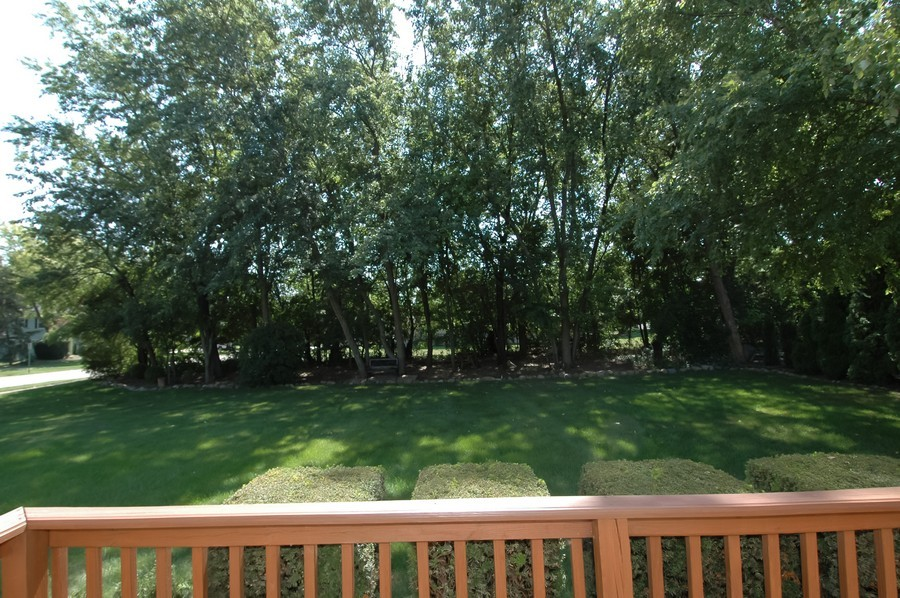 Real Estate Photography - 1143 Palmer CT, CRYSTAL LAKE, IL, 60014 - Back Yard