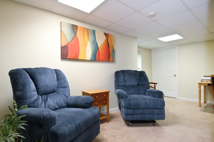 Real Estate Photography - 9165 Falcon Greens Dr, Lakewood, IL, 60014 - Lower Level