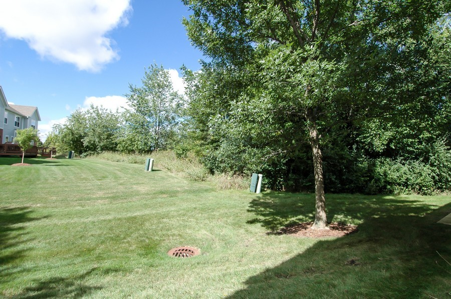 Real Estate Photography - 9165 Falcon Greens Dr, Lakewood, IL, 60014 - Back Yard