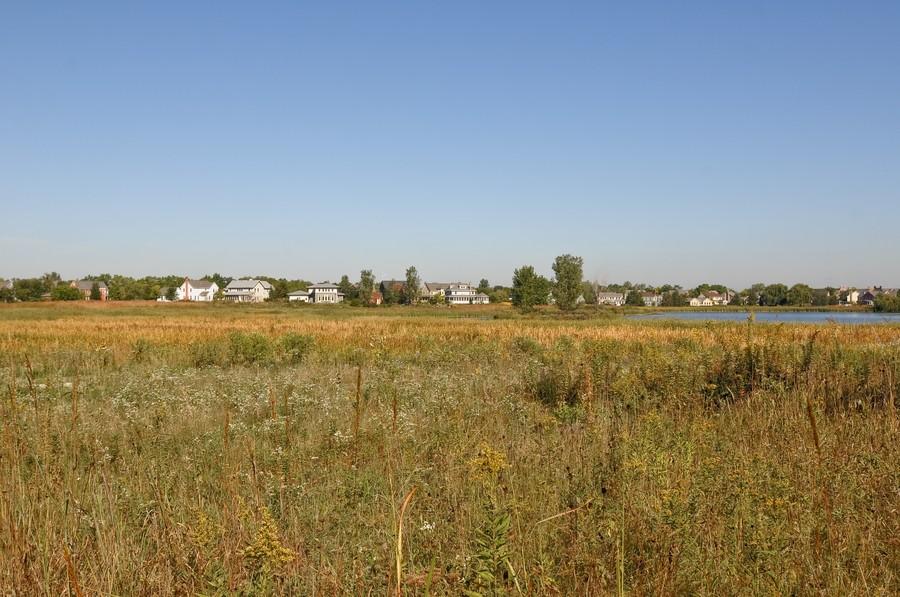 Real Estate Photography - 1403 Sunflower Ct, Grayslake, IL, 60030 - Backyard View