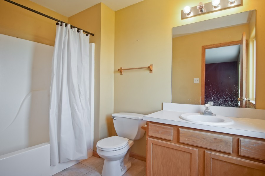Real Estate Photography - 25430 South Mallard Dr, Channahon, IL, 60410 - Master Bathroom