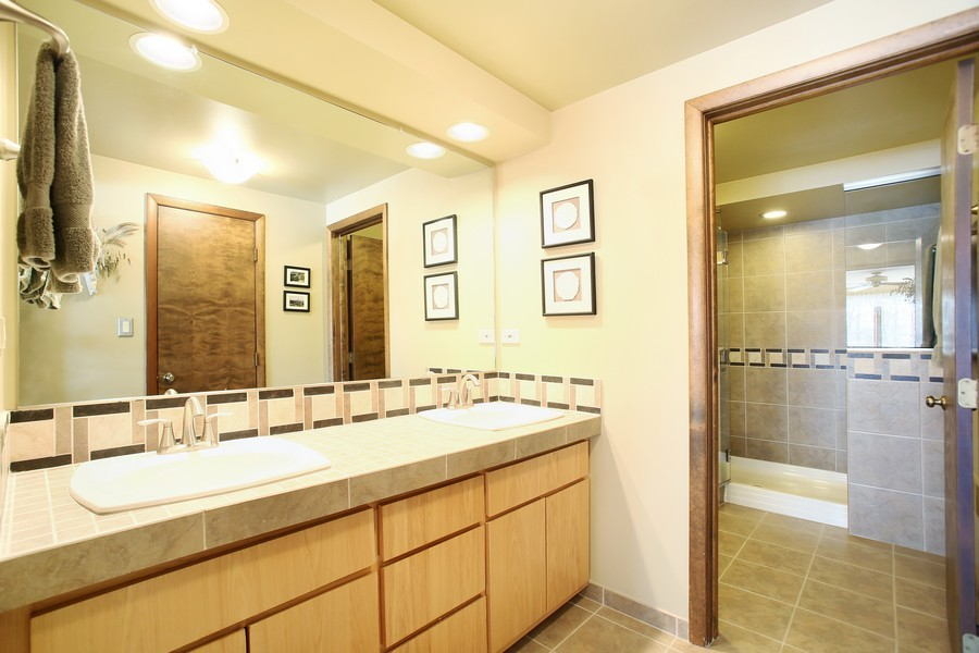 Real Estate Photography - 1433 Grant St, Downers Grove, IL, 60515 - master bathroom