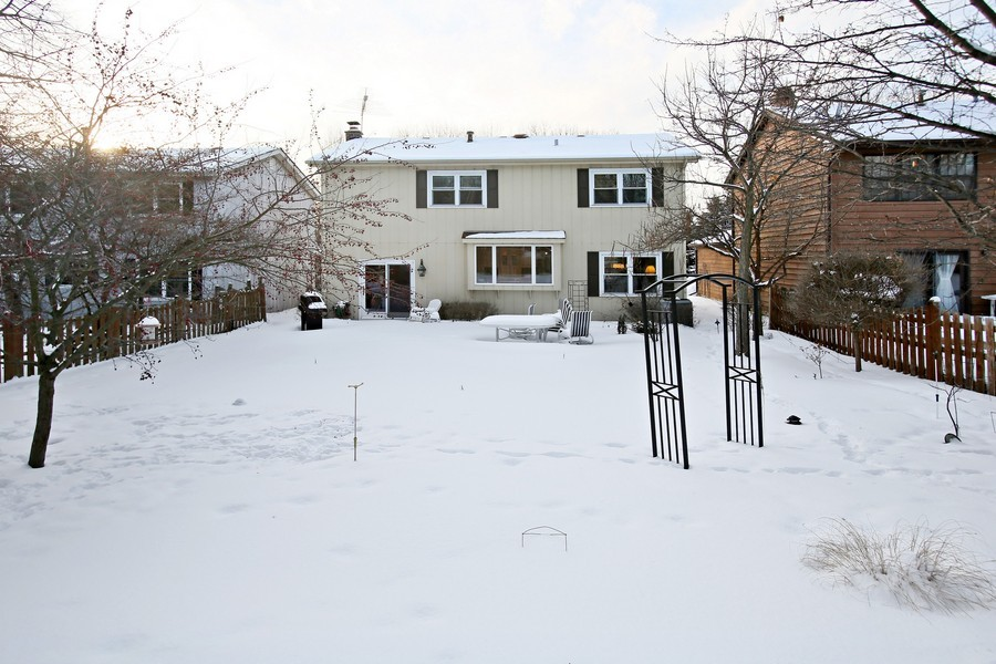 Real Estate Photography - 820 Morningside Dr, Naperville, IL, 60563 - Rear View