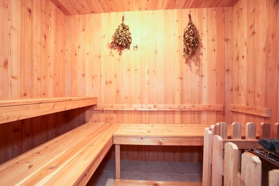 Real Estate Photography - 251 N Park, Westmont, IL, 60559 - Sauna