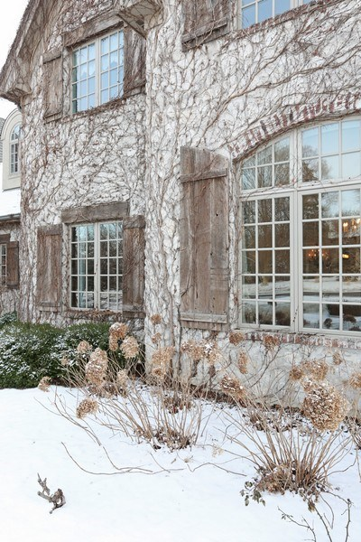 Real Estate Photography - 8S223 Derby Dr, Naperville, IL, 60540 - Graceful vines adorn the stone front