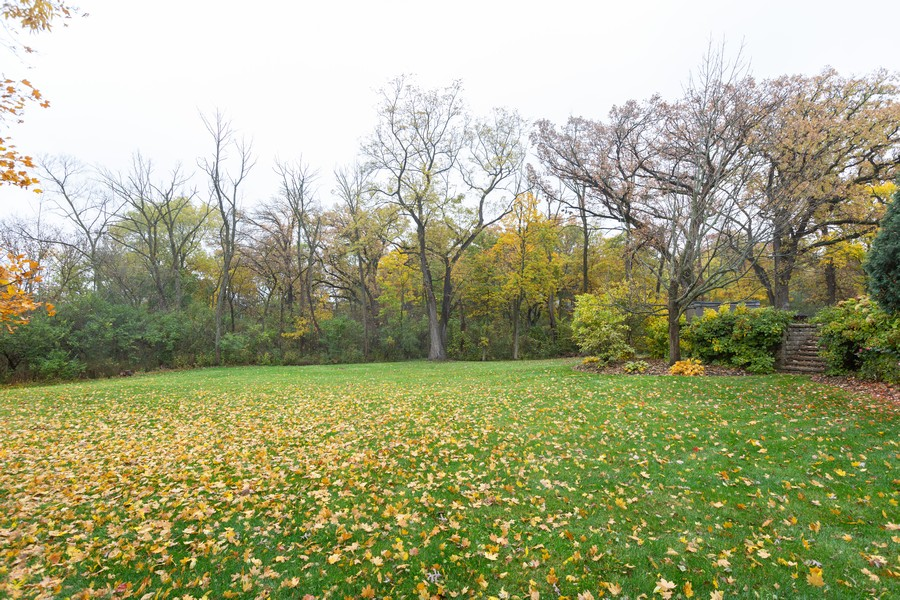 Real Estate Photography - 8S223 Derby Dr, Naperville, IL, 60540 - Private, wooded yard, Summer