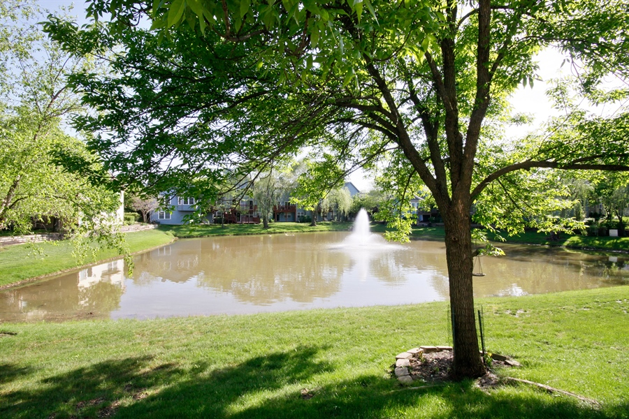 Real Estate Photography - 1919 Prentiss Dr, 5, Downers Grove, IL, 60516 - Back Yard