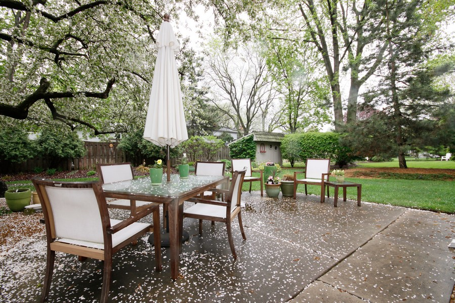 Real Estate Photography - 6123 Washington St, Downers Grove, IL, 60516 - Back Yard