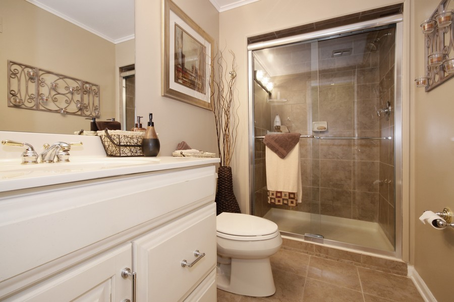 Real Estate Photography - 6123 Washington St, Downers Grove, IL, 60516 - Lower Level Bathroom